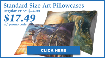 Standard Pillowcases Designed By Artist Jim Hansel